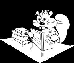 squirrel-304021_960_720