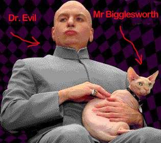 mr_bigglesworth