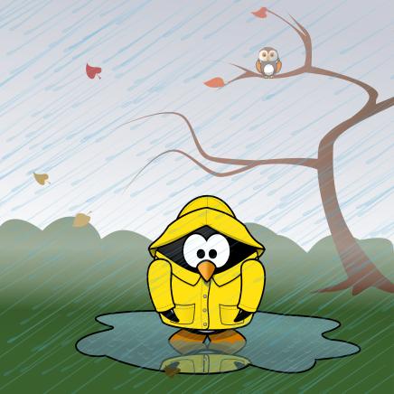11-November-Singing-in-the-Rain