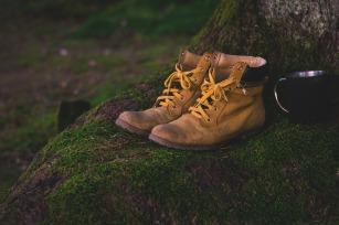 shoes-1638873_960_720.jpg