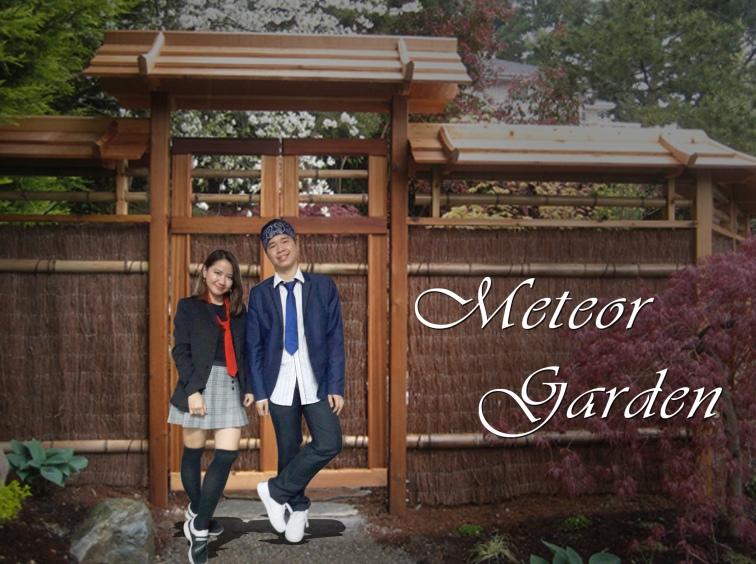 Meteor Gardening (3)