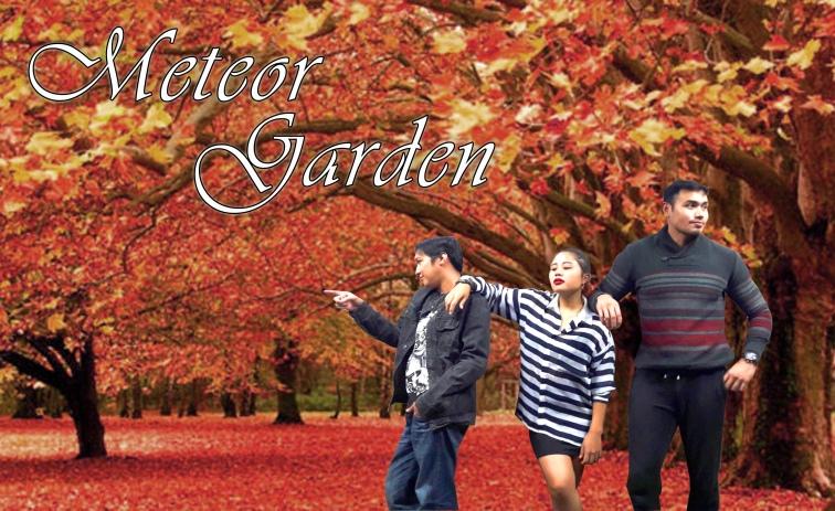 Meteor Gardening (4)